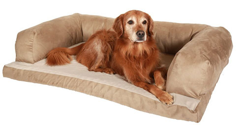 The Beasley's Couch Bed is great for dogs that like to snuggle against something when sleeping