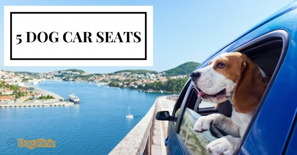 TheDogClinic.com Guide to Car Seats for Dogs