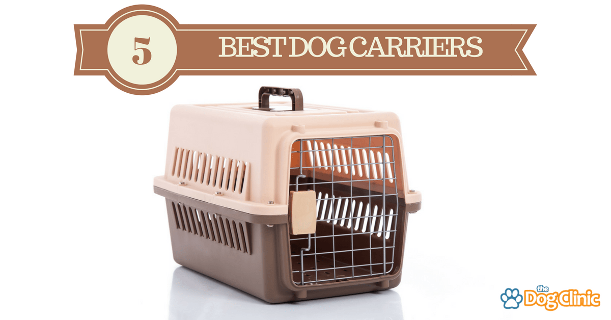 5 Best Dog Carriers For Travel Cars Amp Airlines 2019