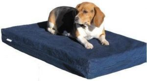 The DogBed4Less is an excellent choice for smaller breeds