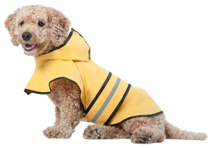 The Fashion Pet Rainy Days is a relatively cheap raincoat