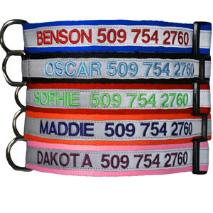 The GoTags is one of the top rated dog collars