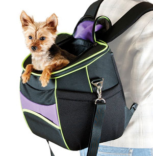 K&H Pet Products Comfy Go