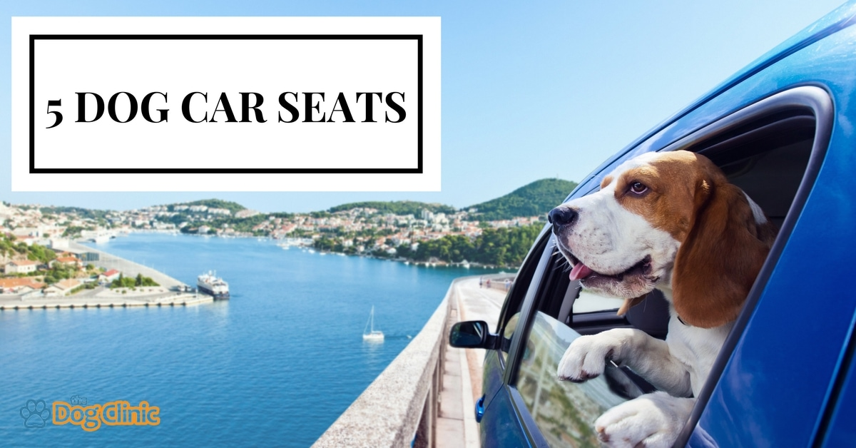 Best Dog Car Seats Booster Hammocks For Safe Travelling 2018 The Clinic