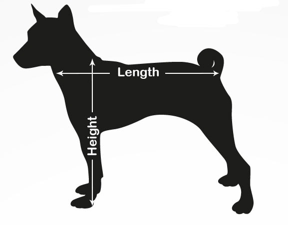 An image guide to sizing a dog carrier
