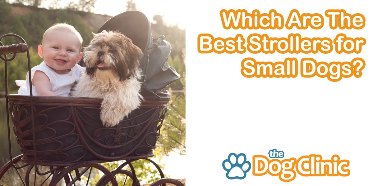 Pet Strollers For Small Dogs - Stroller