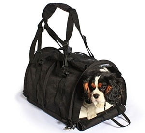 The SturdiBag pet carrier is available in several sizes