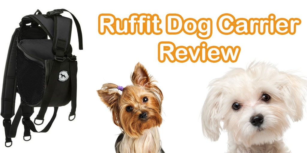 Ruffit Dog Carrier Review The Best Backpack Carrier Or
