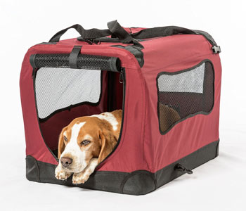 The 2Pet is a foldable crate with a dog-proof zipper