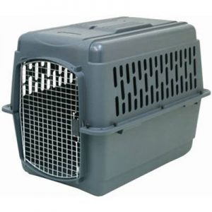 The AspenPet is a durable crate (although it's not a good example of a car-safe crate)
