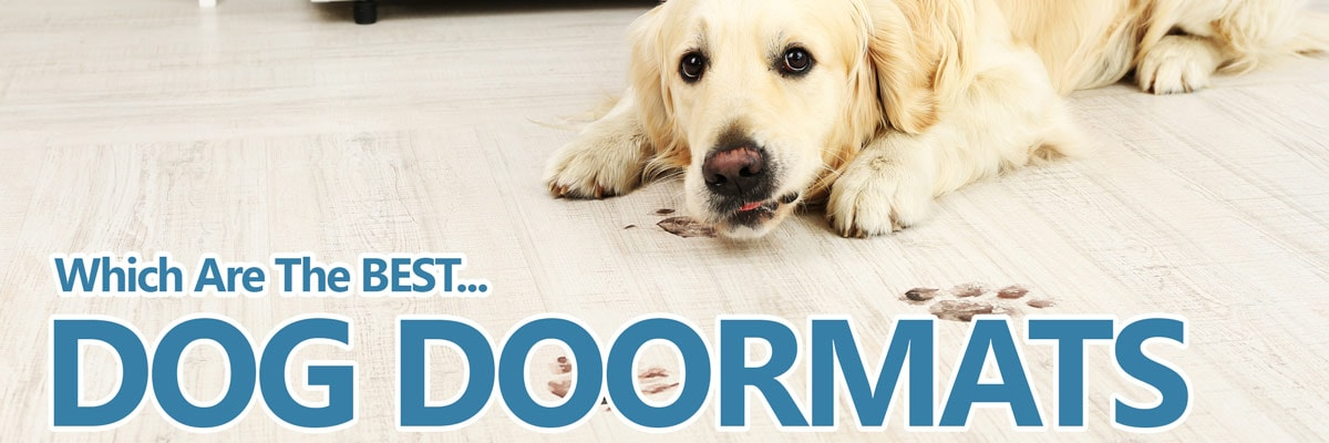 Delicieux A Guide To The Best Dog Doormats