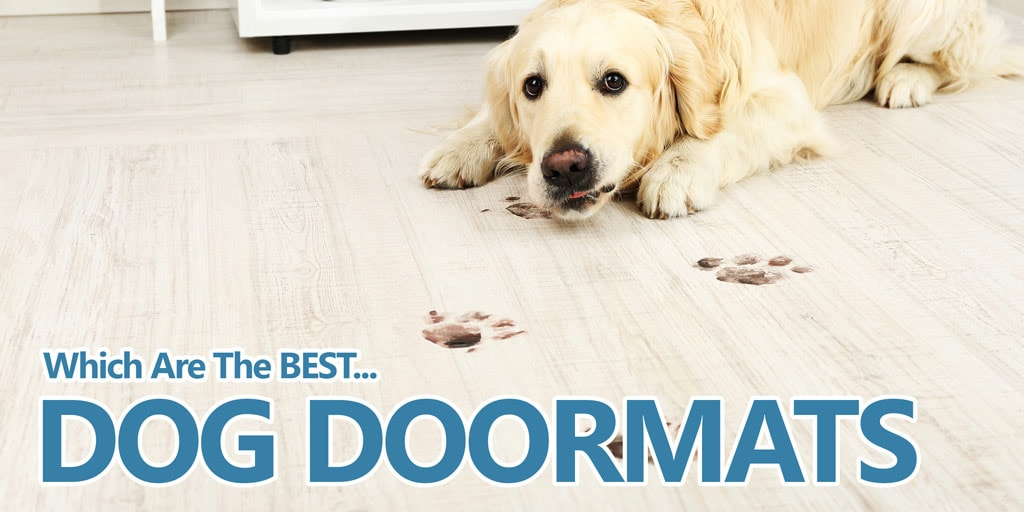 5 Best Dog Doormats For Cleaning Dirty Paws 2019