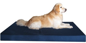 Dogbed4less Memory Foam