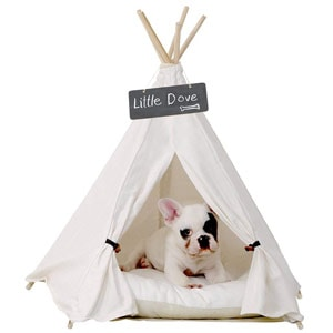 Little Dove Pet Tent Tipi