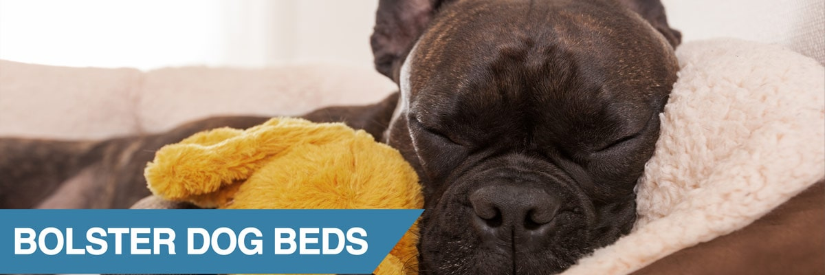 A guide to the best dog bolster beds