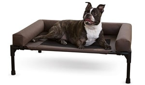 K&H Elevated Bolster dog beds are a stylish option