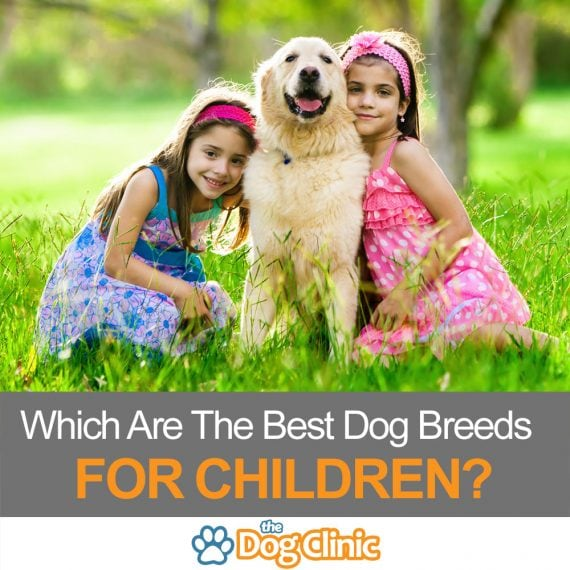 A guide to the best breeds for children