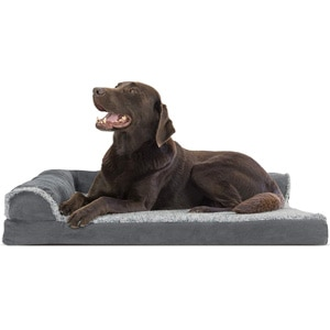 FurHaven couch bed