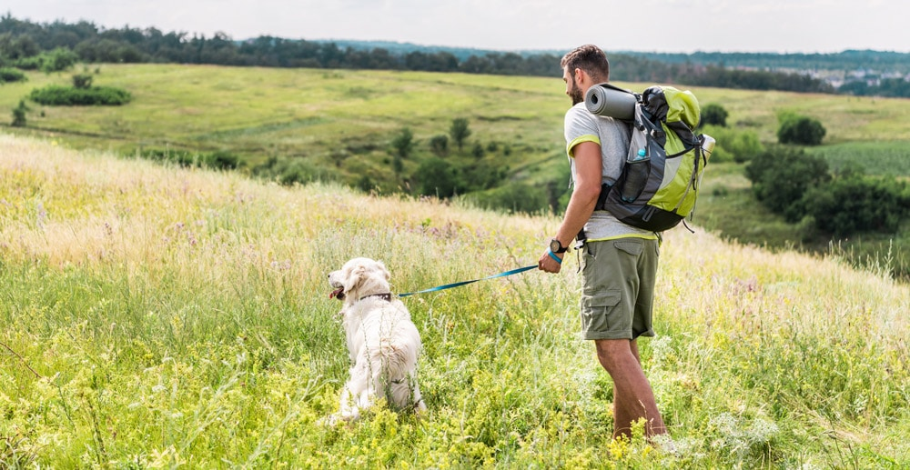 Hiking with your pup