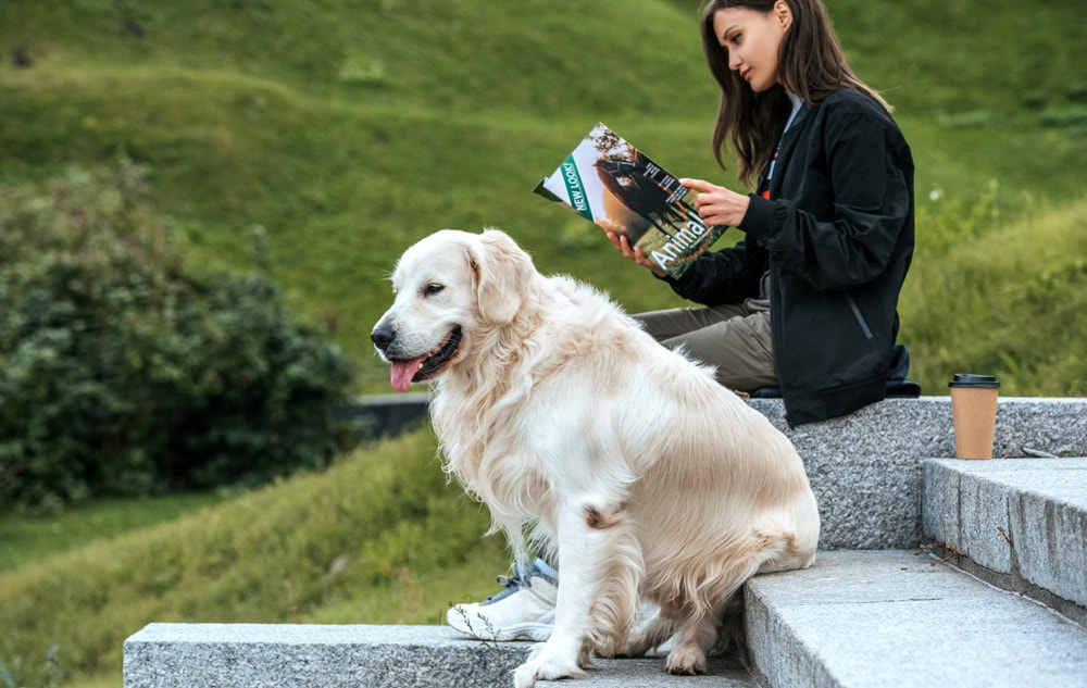 Reading with a golden retriever