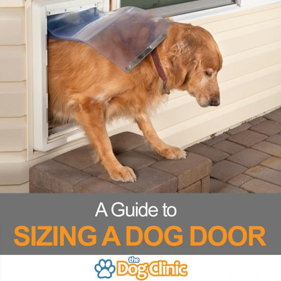 A guide to sizing a dog door