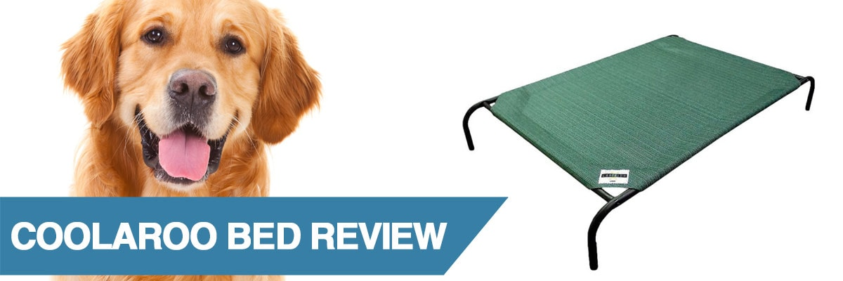 A review of the Coolaroo dog bed