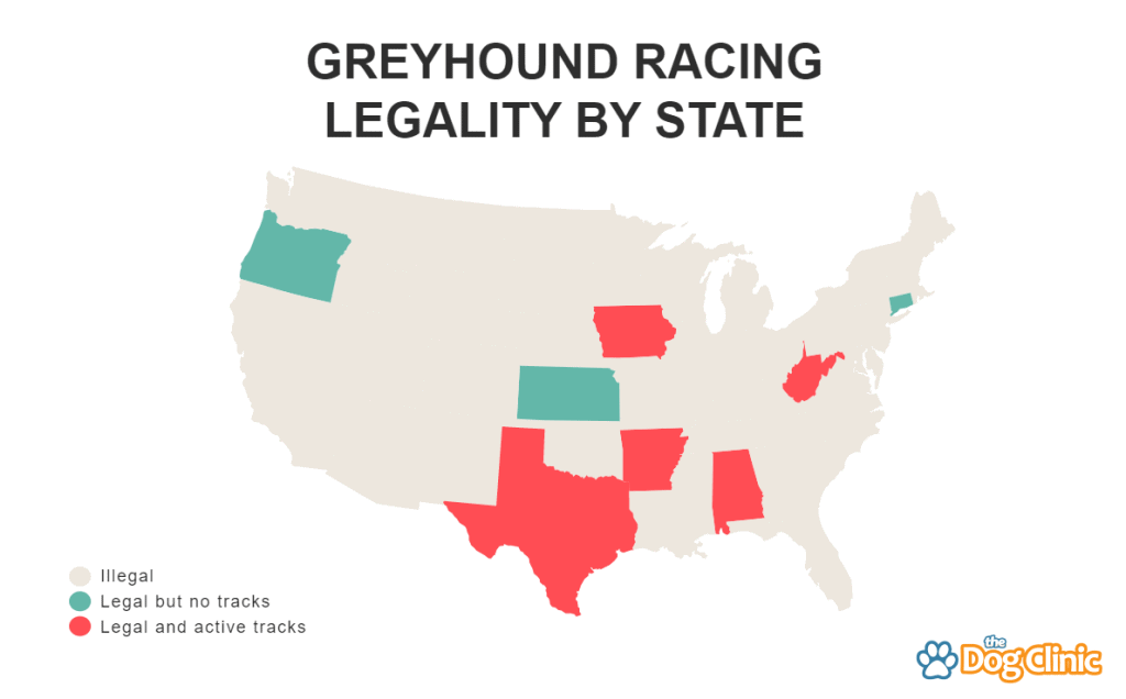 Greyhound racing by state in the US