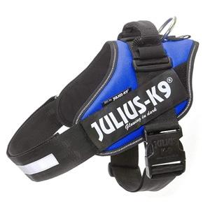 Julius-K9 IDC
