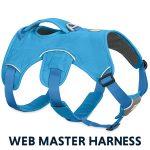 The Ruffwear Webmaster