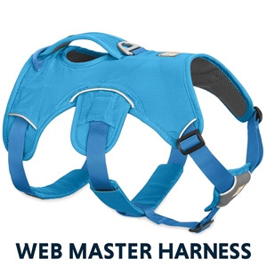 Ruffwear Webmaster is a great harness for pug