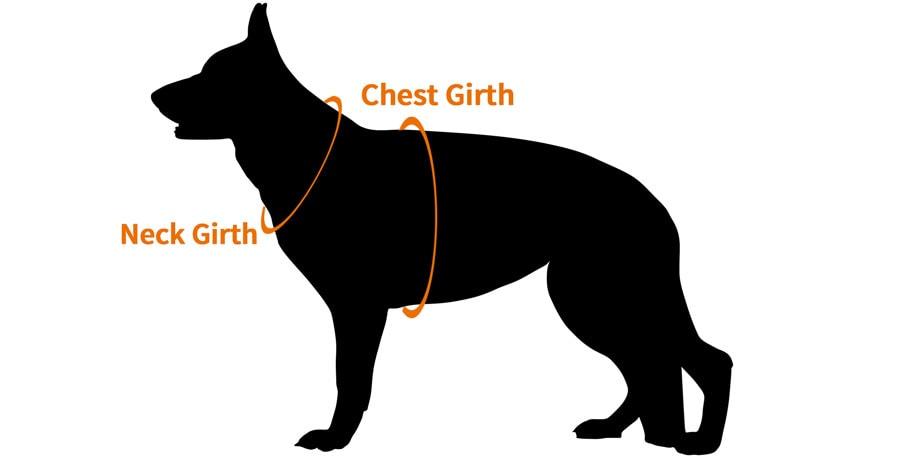 German Shepherd Harness Sizing Guide