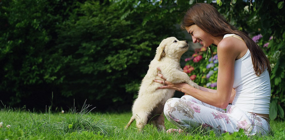 A puppy greeting a woman outdoors