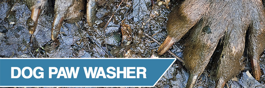 Dog paw washers - a complete guide