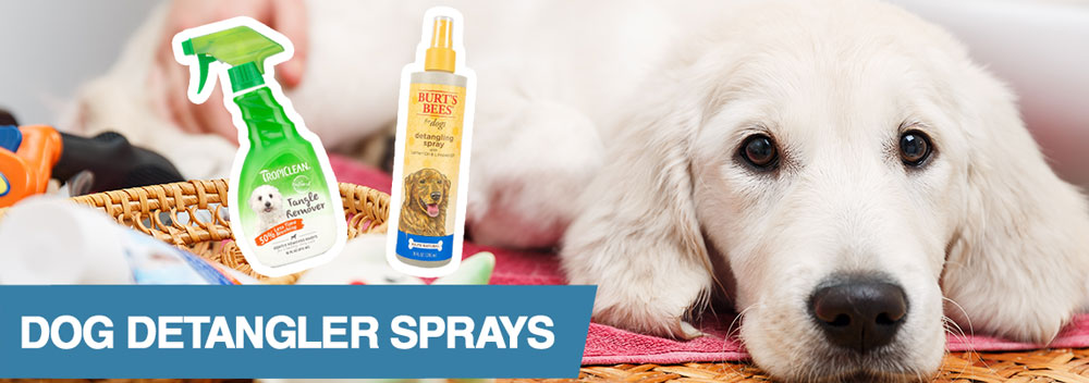 A guide to the best dog detangling sprays