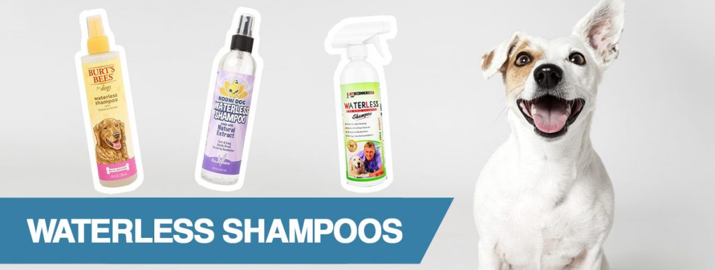 A guide to the best dry and waterless shampoos