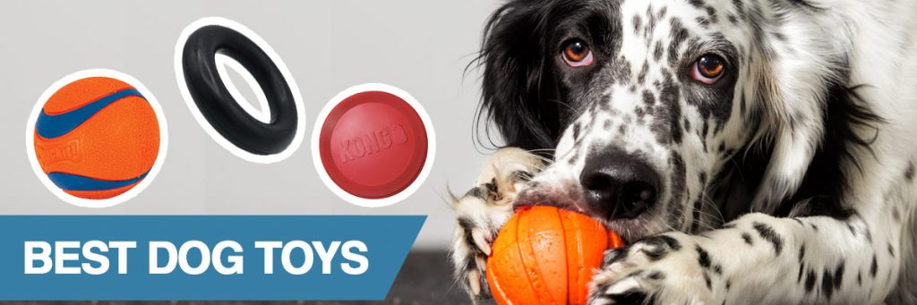 A guide to the best dog toys