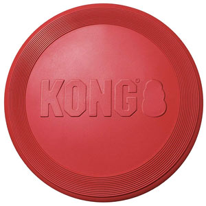 Kong frisbee - one of the best canine frisbees