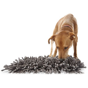 Paw5 Snuffle Mat - useful for hiding a dog treat