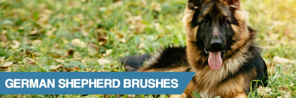 A guide to the best dog brush for german shepherd