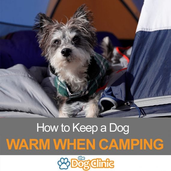 Camping warmth guide