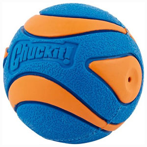 Chuckit! Ultra Squeaker Ball is one of the best ball toys for puppies