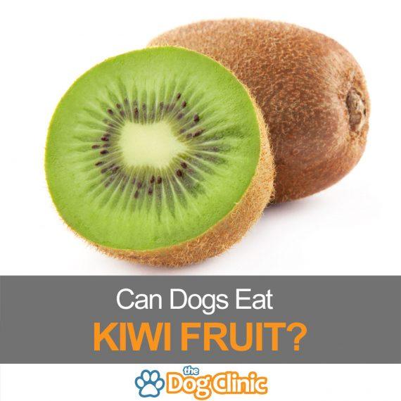 A sliced kiwi fruit