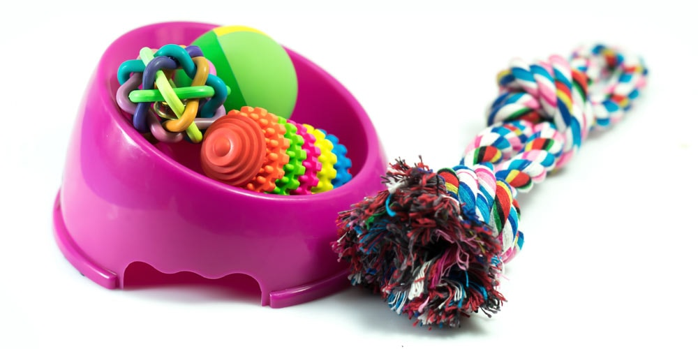 A selection of toys for puppies