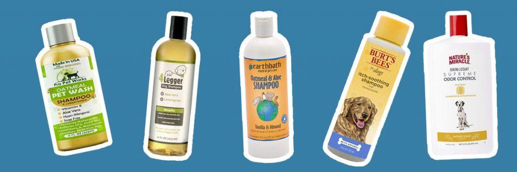 Some examples of dog shampoos